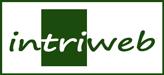 InTriWeb Internetmarketing Trier